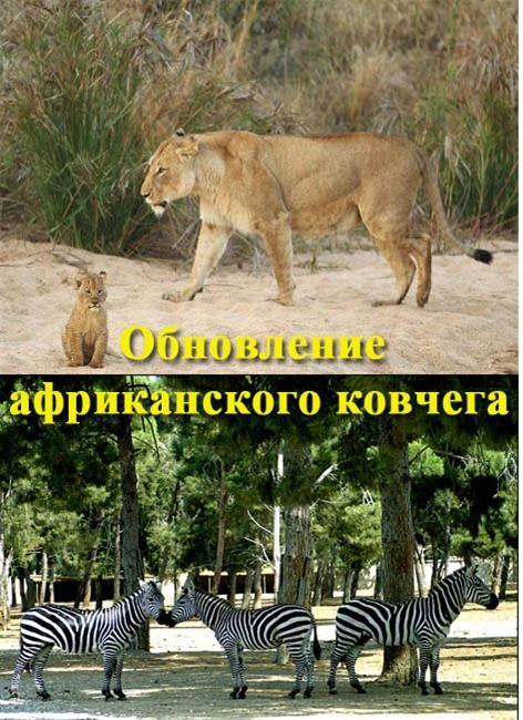 смотреть софия прекрасная 3 сезон 3 серия на русском